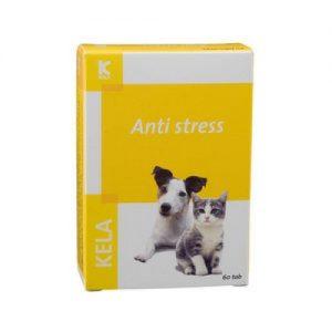 Beruhigungsmittel für den Hund