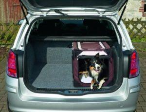 Tipps in der Anwendung einer faltbaren Hundebox