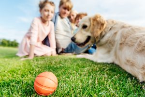 Familie mit Hund und Ball