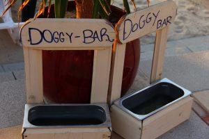 Hundebar aus Holz